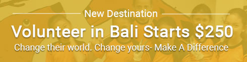 volunteer in bali